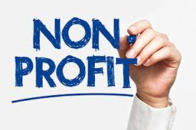 Types Of Companies In South Africa - Non-profit Companies